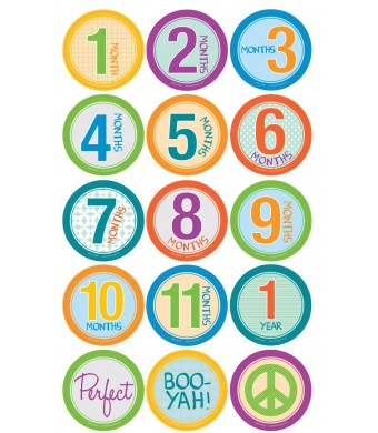 Belly Banter BABY UNISEX Monthly Growth Stickers Includes 12 month stickers plus 3 BONUS statement stickers