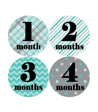 Months in Motion 086 Monthly Baby Stickers Baby Boy Milestone Age Sticker Photo