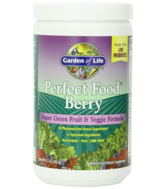 Garden of Life Perfect Food Berry, 240g Powder