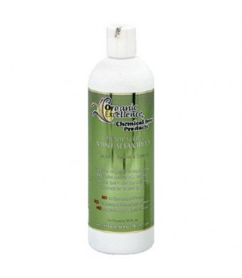 Organic Excellence Mint Shampoo, 16 Ounce