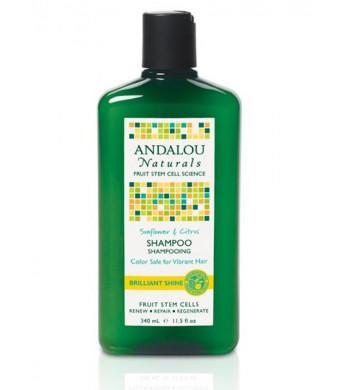 Andalou Naturals Brilliant Shine Shampoo, Sunflower and Citrus, 11.5 Ounce