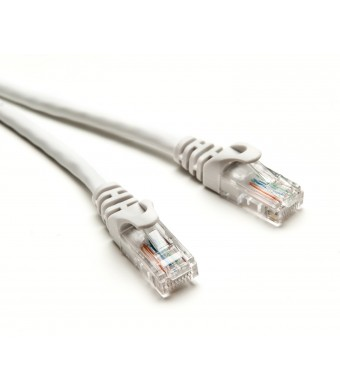 BlueRigger Cat5e Ethernet Patch Cable (100 Feet)