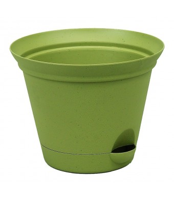 Misco 954-060 Flare Self Watering Planter, 9-Inch, Avocado