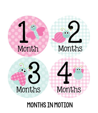 Months in Motion 317 Monthly Baby Girl Stickers Pink Cute Bugs Months 1-12