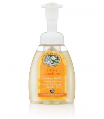 Oregon Soap Company - Castile Foaming Hand Soap, Citrus Sunshine, USDA Certified Organic Oils (Citrus Sunshine, 8.3 oz)