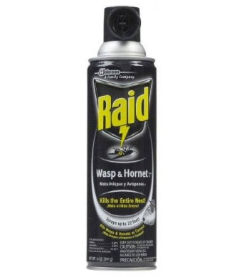 Raid Wasp and Hornet Killer 33 Spray, 14-Ounce (Discontinued by Manufacturer)