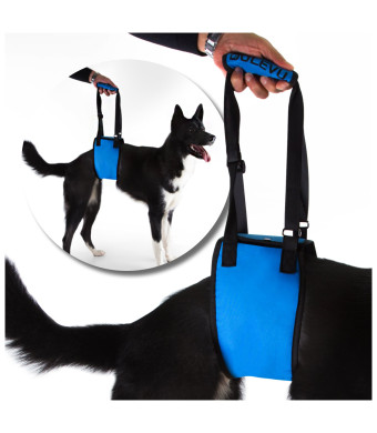 Dulevu Dog Lift Harness Support Sling Helps for Arthritis Rehabilitation, Low Mobility and Loss of Stability (Large)