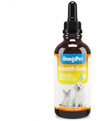 Fur Goodness Sake Kennel Cough Medicine for Dogs - Organic Dog Cough Medicine for Colds and Allergies - Natural Kennel Cough Treatment with Mullein Leaf and Elderberry