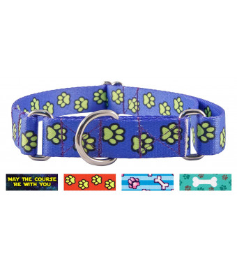 Country Brook Petz | Martingale Dog Collar - Dog's Life Collection