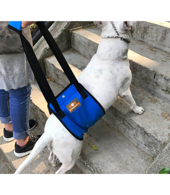 Blue Dog Lift Support Harness with Handle for Canine Older or Injuries Hind Leg-Lifting K9 for Injuries, Arthritis or Joints.Assist Sling for Rehabilitation and Stability and Mobility