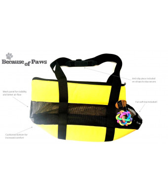 "Because of Paws 17"" Soft Pet Travel Pet Carrier with Bonus Toy Ball - Ideal for Small Cats and Dogs - Versatile and Airline Approved"