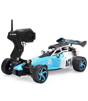 Blexy RC Car Remote Control Racing Car 2.4Ghz 2WD High Speed Off-Road Vehicle 1:24 Scale Truck Electric Fast Race Buggy (Blue)