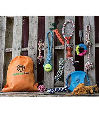 EarthyPaw 12 Pcs Dog Rope Play Set for Small to Medium Sized Dogs