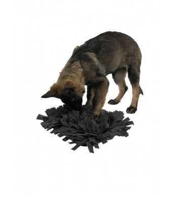 Dog Nosework Snuffle Mat for Small to Medium Sized Pets