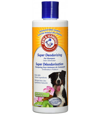 Arm and Hammer Super Deodorizing Shampoo for Dogs | Best Odor Eliminating Shampoo for All Dogs and Puppies, 16 ounces (Pack of 2), Kiwi Blossom Scent