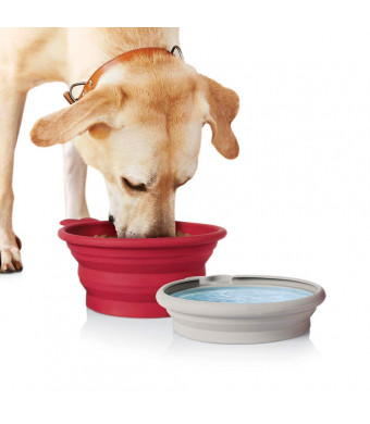 Pet Parade - Pop-up Food and Water Bowl Set - Travel Friendly Pet Bowl - Collapsible and Interlocking Design - for Water and Food - Portable Use