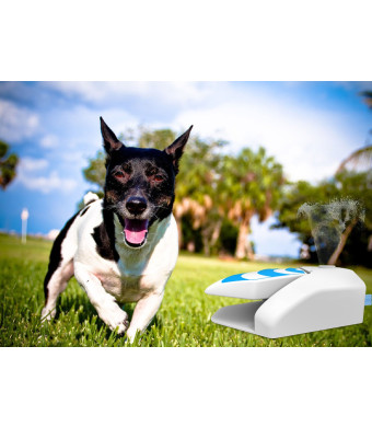 ALL FOR PAWS Dog Step on Water Sprinkler Pet Garden Water Fountain with Pressure Regulator