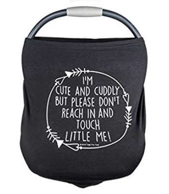 Car Seat 5 in 1 Cover  I'm Cute and Cuddly But Please Don't Touch Little Me