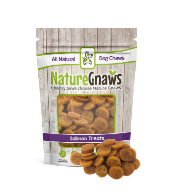Nature Gnaws Smoked Salmon and Sweet Potato Chips - 100% Natural Grain Free Dog Treats