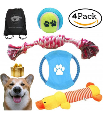 Mystic Soul Dog Chewable Toys Set - Gift Pack of 4 Resistance Durable Toy Playtime + Gift Bag for Chewers - Small and Medium Dogs ...