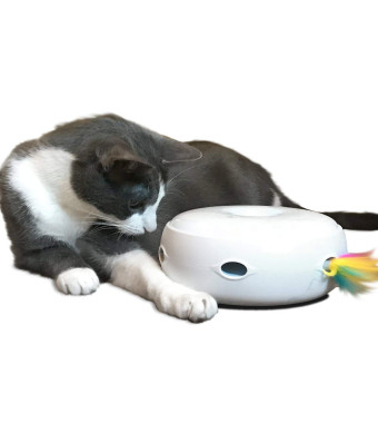 PetFusion Ambush Interactive Cat Toy. [Daytime or Nighttime Play, stimulates Cat's Senses and Instincts]. Easy Return if Your cat is Sensitive to Mechanical Sound