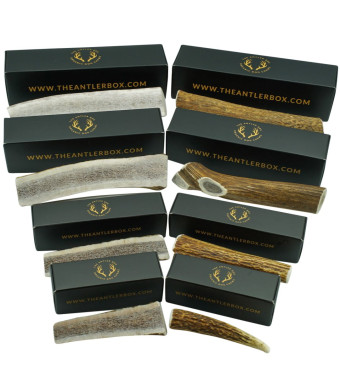 The Antler Box Premium Elk Antler Dog Chews (1 Piece Per Order) -Both Whole and Split Antlers-Long Lasting Organic Chewing Toys Sourced from Naturally Shed Antlers in The USA