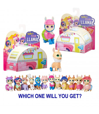 Who's Your Llama Assorted 2 Pack Figures, Series #1 - 12 Different Figures to Collect!