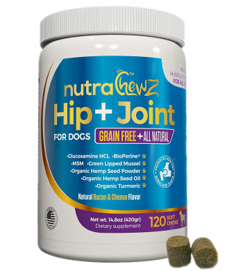 GRAIN FREE Hip and Joint Supplement with Organic Hemp Oil For Dogs and Glucosamine Chondroitin, Turmeric, MSM, Green Lipped Mussel + BioPerine for Arthritis Pain Relief + Mobility All Natural 120 Chews