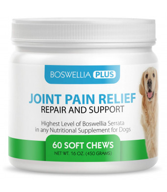 Boswellia Plus Glucosamine Joint Supplement for Dogs  60 Soft Chews with Boswellia Serrata, Green Lipped Mussel, Hyaluronic Acid, Grape Seed Extract, Turmeric and MSM - K9 Joint Pain Relief and Support