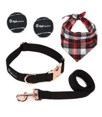 AJ EXPRESS Dog Leash and Collar Walking Kit - A Matching Nylon Leash and Collar Set | 2 Tennis Balls | Dog Bandana | for Medium to Large Dogs!