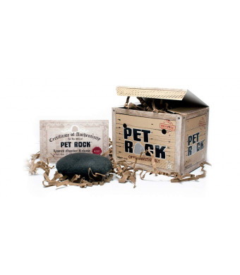 Pet Rock...Authentic and Approved by The Original Creator Gary Dahl
