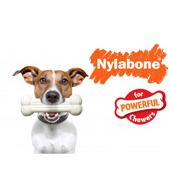 Nylabones Dog Chew Toy Powerful Chewer,Zig Zag Chicken (Durable and Long Lasting)
