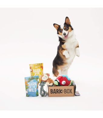 BarkBox Starter Kit Assortment Dog Plush Toys, Chew Toys, Squeak Toys, All-Natural Treats/Chews Made in The USA