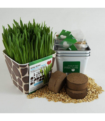 Priscillas Pet Products Kitty Grass Triple Kit (3 Harvests)