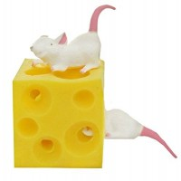 Play Visions Stretchy Mice and Cheese