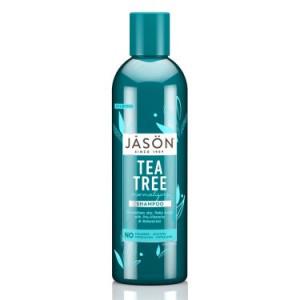JASON Tea Tree Normalizing Shampoo, 17.5 Fl Oz
