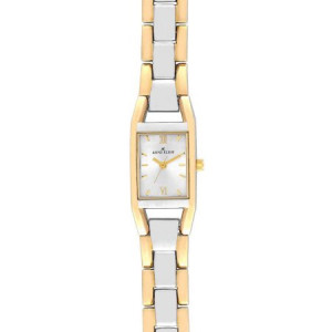 Anne Klein Two-Tone Ladies Watch 10-6419SVTT