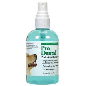 Top Performance ProDental Dental Spray 4 Oz