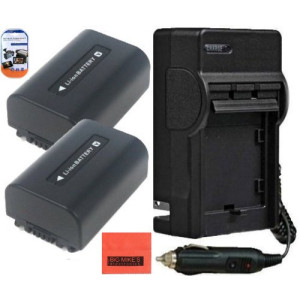 BM Premium Pack of 2 NP-FV50 Batteries And Battery Charger for Sony HDR-CX220, HDR-CX230, HDR-CX290, HDR-CX330, HDR-CX380, HDR-CX430V, HDR-CX900, TD3