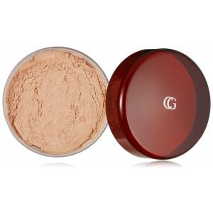 CoverGirl Professional Translucent Face Loose Powder Translucent Light(N) 110, 0.7 Ounce Shaker top jar