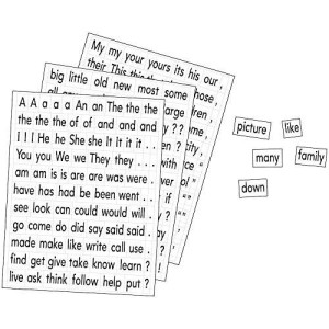 Educational Insights Magnetic Sight Words