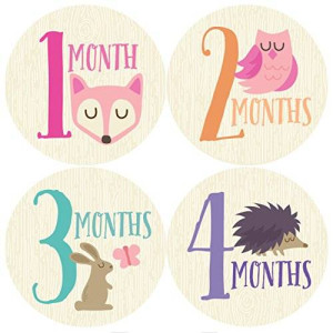 Penny & Prince Designs LLC Woodland Monthly Baby Sticker, Baby Girl