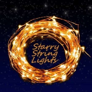 LED String Lights,Nozza Copper Wire Lights, Starry String Lights, Décor Rope Lights For Seasonal Decorative Christmas Holiday, Wedding, Parties(100 Leds, 33 ft,Warm White)