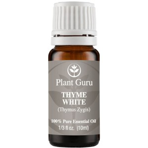 Plant Guru Thyme (White) Essential Oil. 10 ml. 100% Pure, Undiluted, Therapeutic Grade .