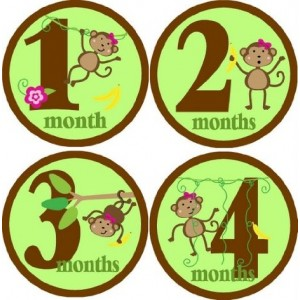 Rocket Bug Monthly Growth Stickers, Monkeying Around for Girls Baby