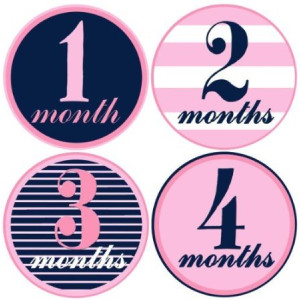 Mumsy Goose Baby Girl Monthly Milestone Stickers 1-12 Months Pink and Navy