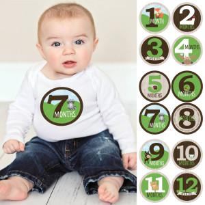 Big Dot of Happiness Monthly Baby Sticker Set - Woodland Creatures - 12 Piece