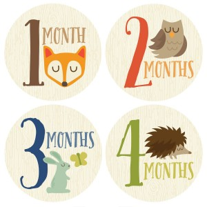 Penny & Prince Designs LLC Monthly Baby Sticker, Woodland, Baby Gift, Baby Boy