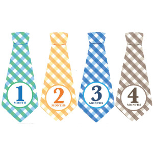 Penny & Prince Designs LLC Monthly Baby Ties, Plaid, Baby Boy Month Stickers, Baby Necktie