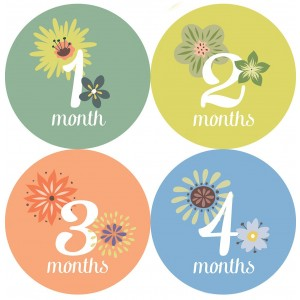 One Little Piggy Designs This Little Piggy Baby Month Stickers - Months 1 Through 12; Baby Monthly Stickers Are Great for B